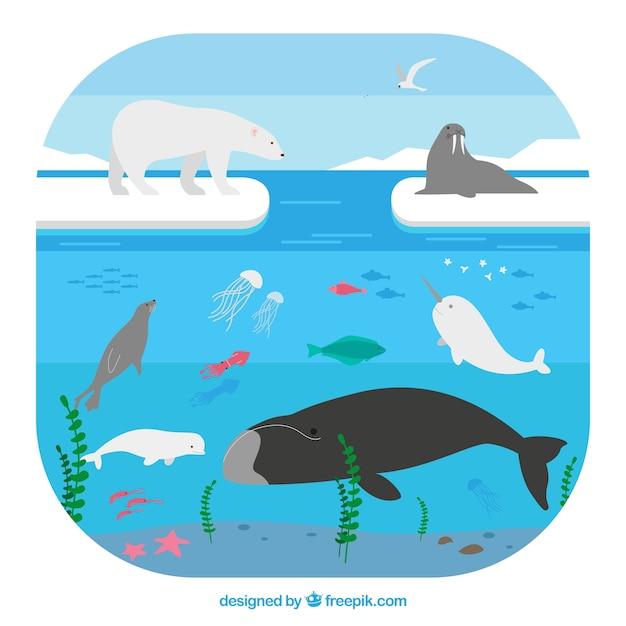 Arctisch ecosysteemconcept Gratis Vector