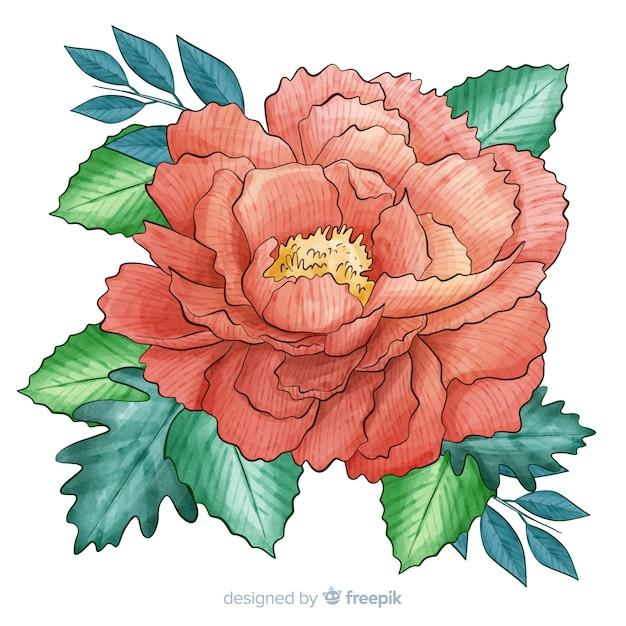 Artistieke aquarel koraal bloem Gratis Vector