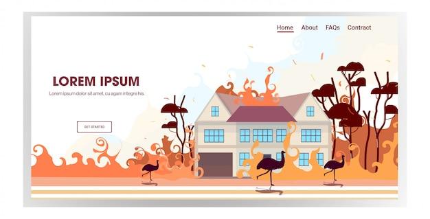 Australische dieren struisvogels lopen van bosbranden in australië wildvuur brandende huizen natuurramp concept intense oranje vlammen horizontale kopie ruimte Premium Vector