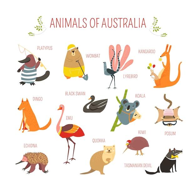 Australische dieren vector cartoon design Premium Vector