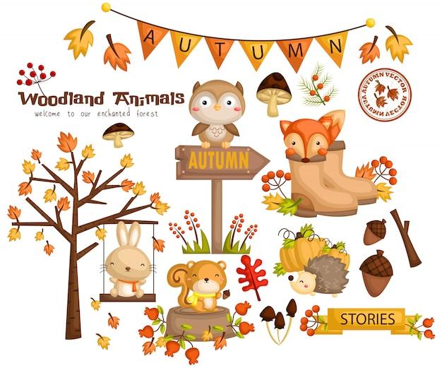 Autumn woodland animal Premium Vector