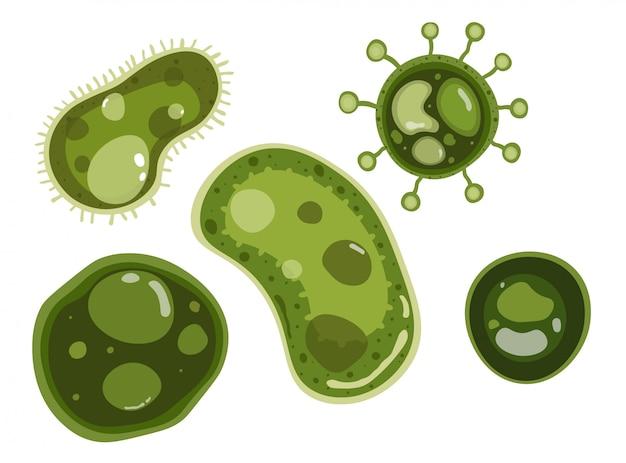 Bacteriën vector ontwerp Premium Vector