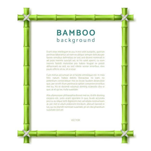 Bamboe frame. eco spa resort vector achtergrond Premium Vector