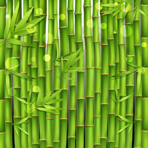 Bamboe oosterse naadloos patroon Gratis Vector
