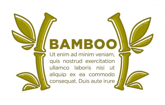 Bamboe vector poster ontwerpsjabloon van tropische palmtak voor spa-centrum Premium Vector
