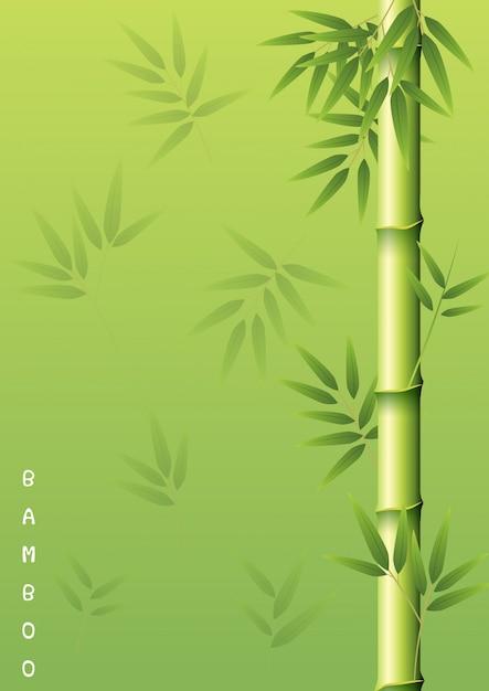 Bamboeboom met groene bladeren Premium Vector