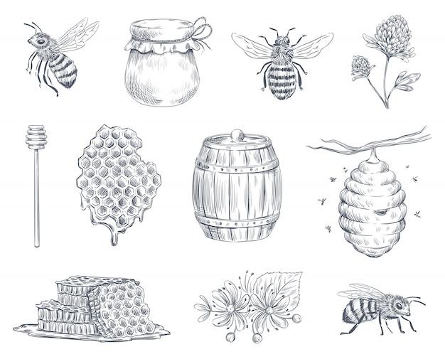 Bee gravure. honingbijen, bijenteelt boerderij en honing honingraat vintage hand getekende illustratie set Premium Vector