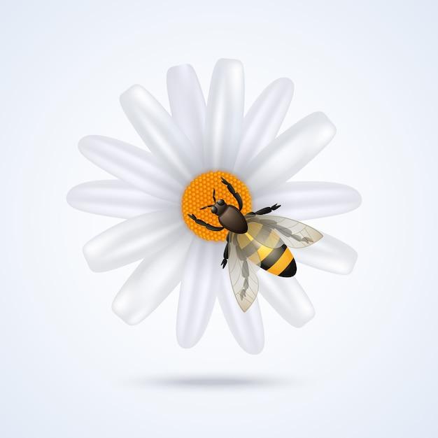 Bee met bloem Gratis Vector
