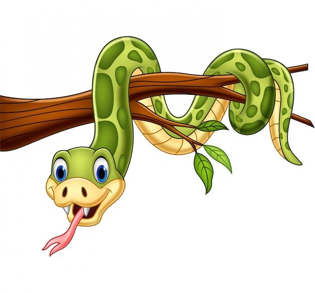 Beeldverhaal groene slang op boomtak Premium Vector