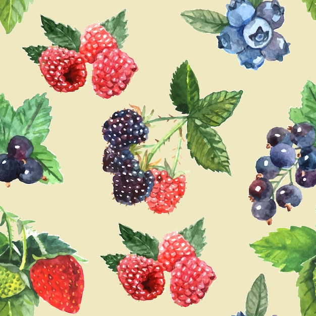 Berry naadloze patroon met aardbei frambozen zwarte bessen Gratis Vector