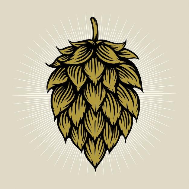 Bier hop illustratie in gravure stijl Premium Vector