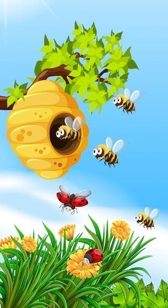 Bijen en insecten vliegen rond bijenkorf Gratis Vector