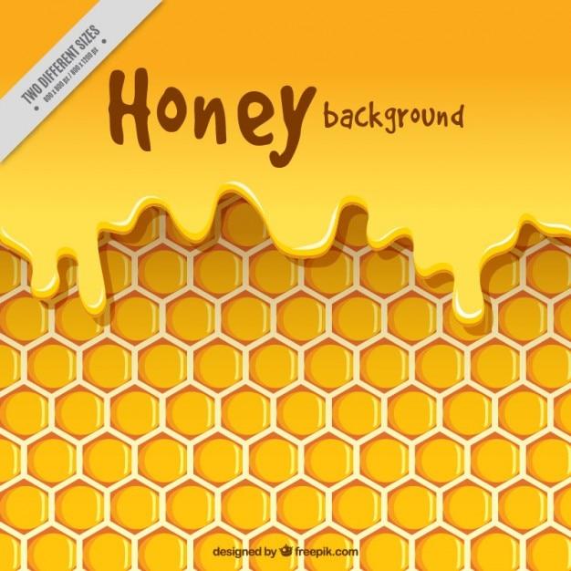 Bijenkorf met honing achtergrond Gratis Vector