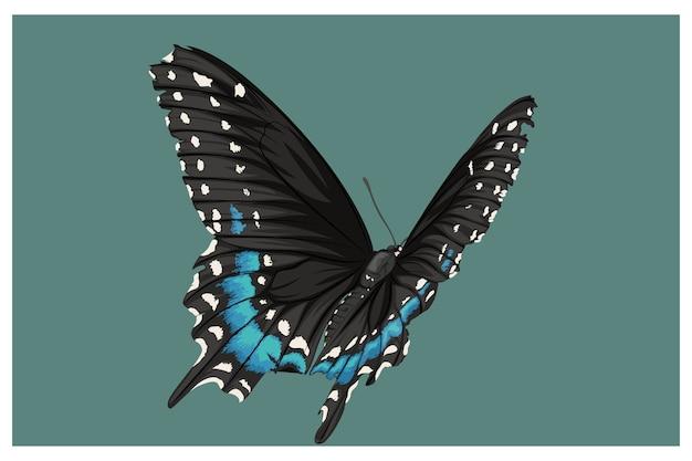 Blauwe en zwarte vlinders gecombineerd Premium Vector