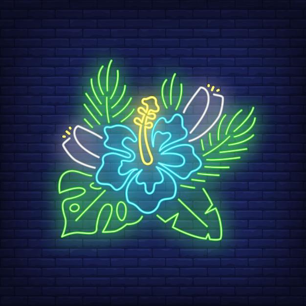 Blauwe hibiscus neon teken. tropische bloem met bladeren. Gratis Vector