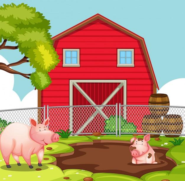 Blij varken bij landbouwgrond Gratis Vector