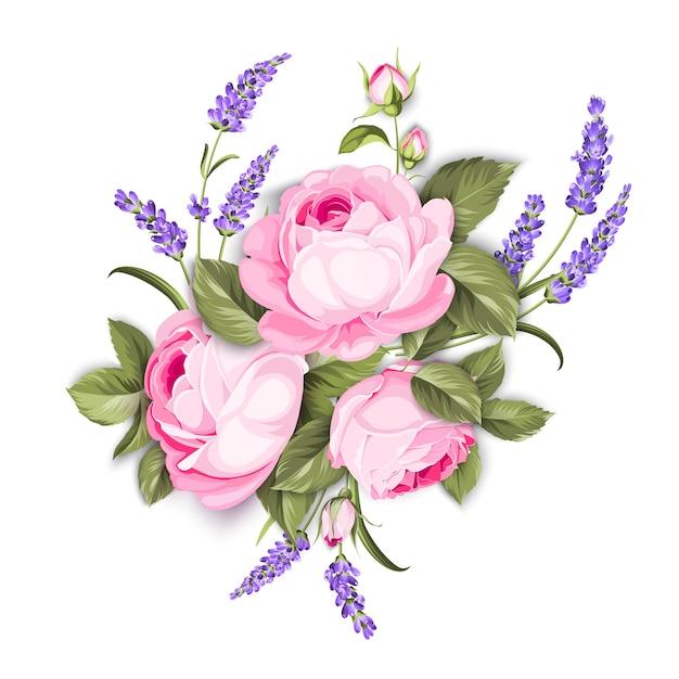 Bloeiende roos op de witte achtergrond Gratis Vector