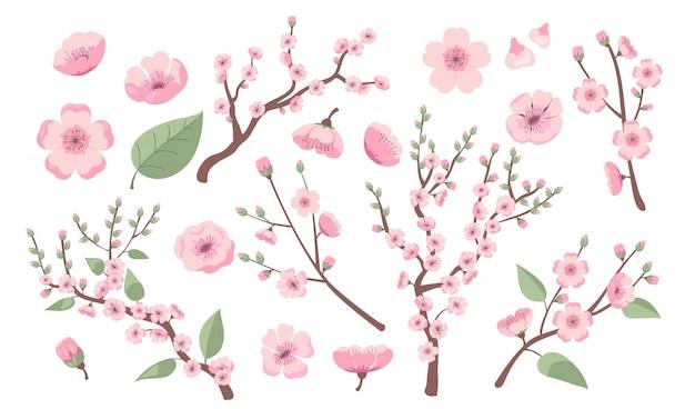 Bloeiende sakura-takken Gratis Vector