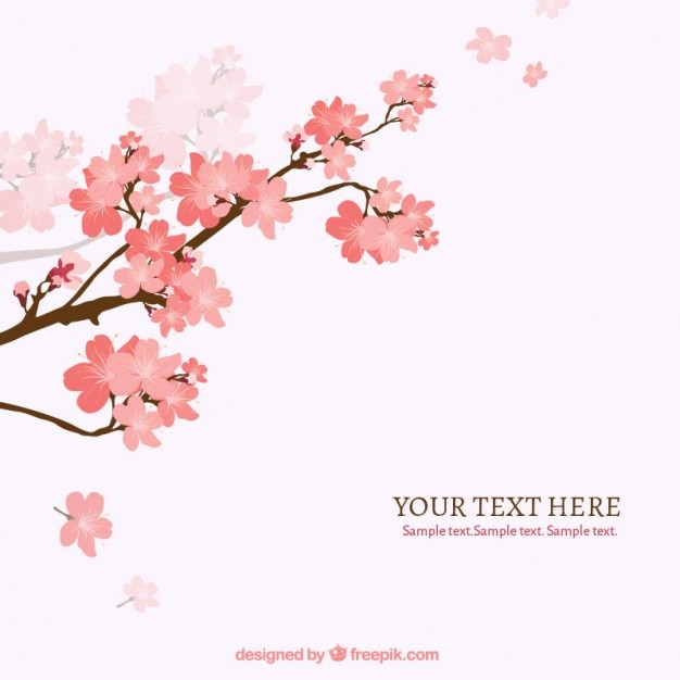 Bloeiende tak van de kersenboom achtergrond Gratis Vector