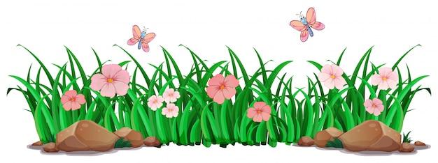 Bloem en gras voor decor Gratis Vector