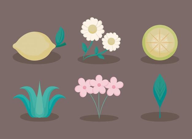 Bloemen en citroenen Premium Vector