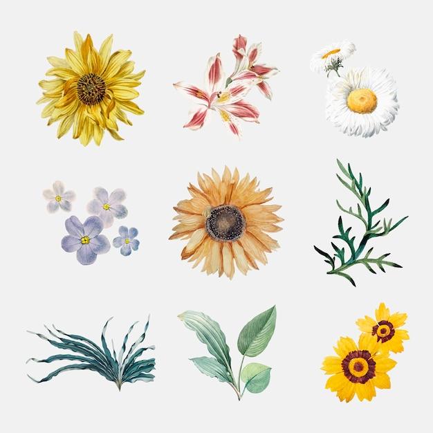 Bloemen in bloei Gratis Vector