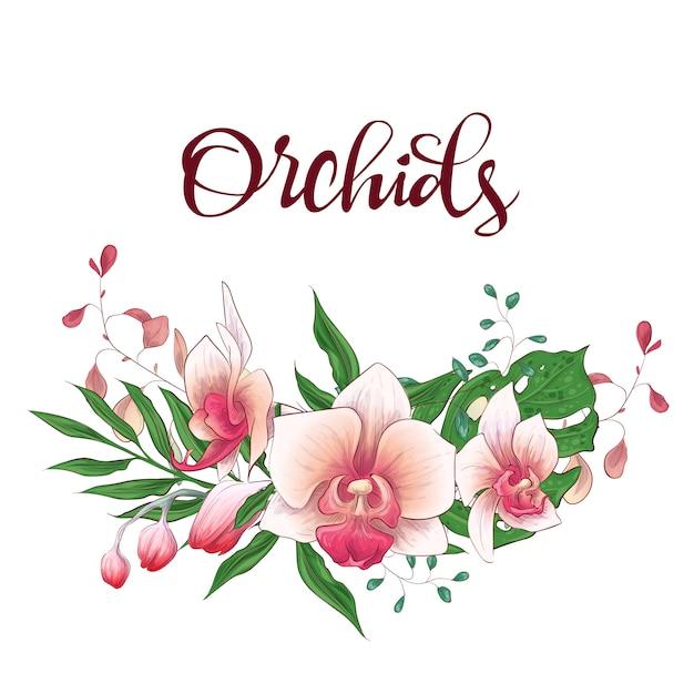 Bloemen ontwerpkader Premium Vector