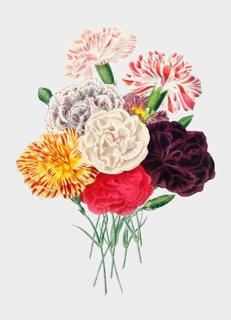 Bloemen Gratis Vector