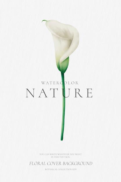 Bloemenachtergrond met waterverflelie Gratis Vector
