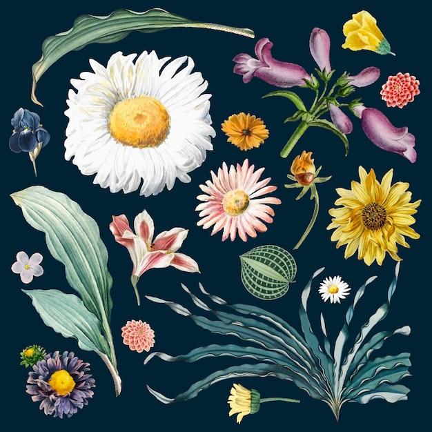 Bloemenpatroon als achtergrond Gratis Vector