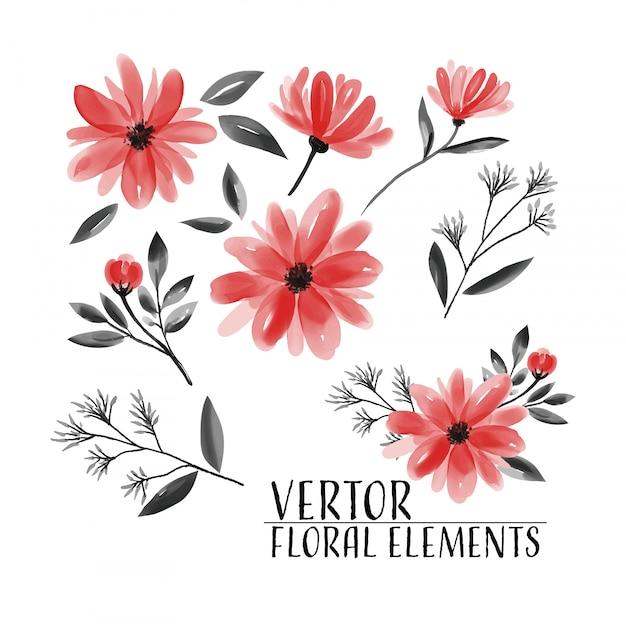 Bloemenreeks bloemeninzamelingswaterverf. Premium Vector
