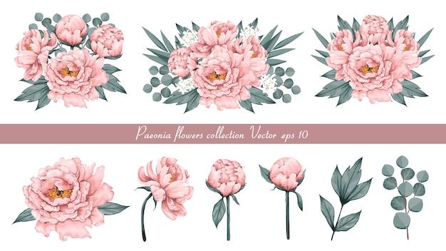 Bloemenwijnoogst met roze paeonia-bloemen eucalyptusbladeren Premium Vector