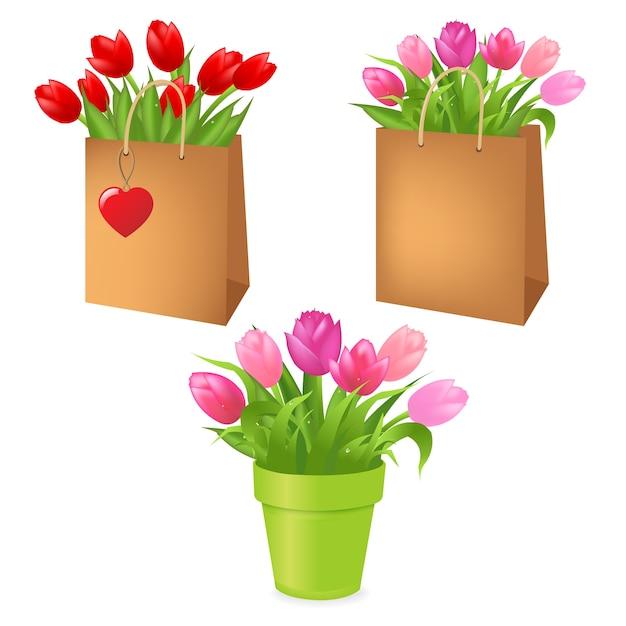 Boeketten tulpen in pakket, op witte achtergrond, illustratie Premium Vector