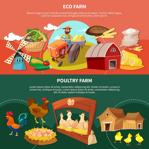 Boerderij twee gekleurde cartoon banner set met eco en pluimvee boerderij beschrijvingen illustratie Gratis Vector