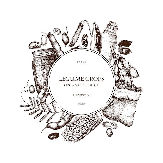 Boerderij verse en biologische planten sjabloon. hand geschetste granen en peulvrucht planten krans Premium Vector