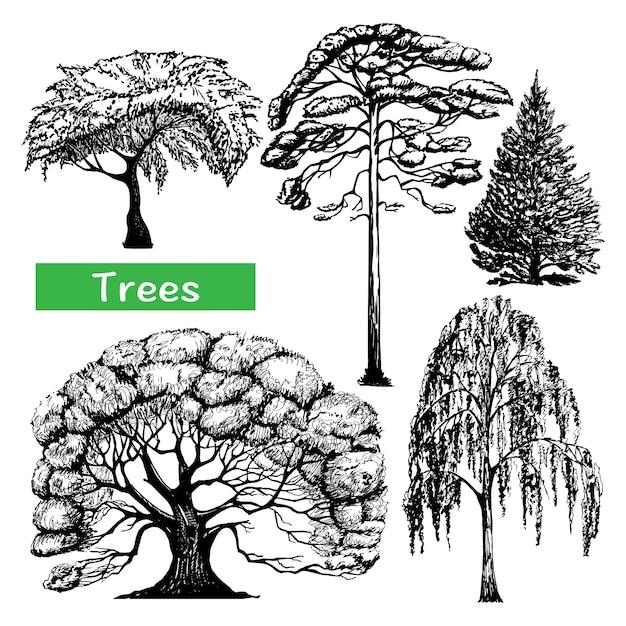 Bomen hand getrokken zwarte pictogrammen instellen Gratis Vector
