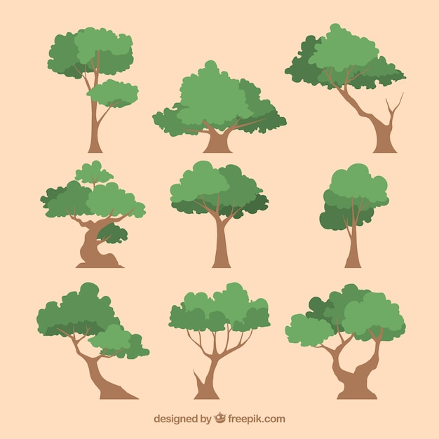 Bomencollectie in 2d-stijl Gratis Vector
