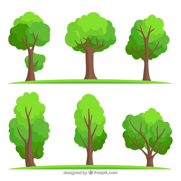 Bomenverzameling in hand getrokken stijl Gratis Vector