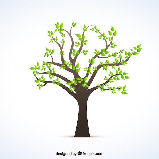 Boom met groene bladeren Gratis Vector