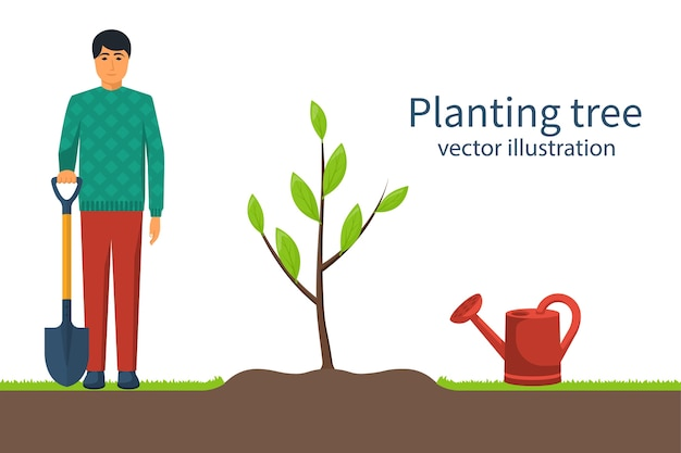 Boom planten. tuinman met in hand schop. proces aanplant concept. tuinieren, landbouw, zorg voor het milieu. illustratie plat ontwerp. jong jong boompje. Premium Vector