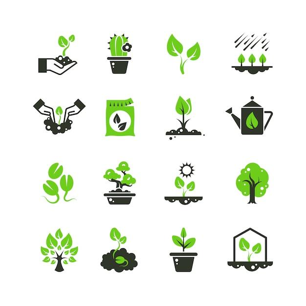 Boomspruit en planten pictogrammen. zaailing en hand aanplant pictogrammen Premium Vector