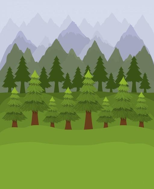 Bos met pijnbomen Gratis Vector