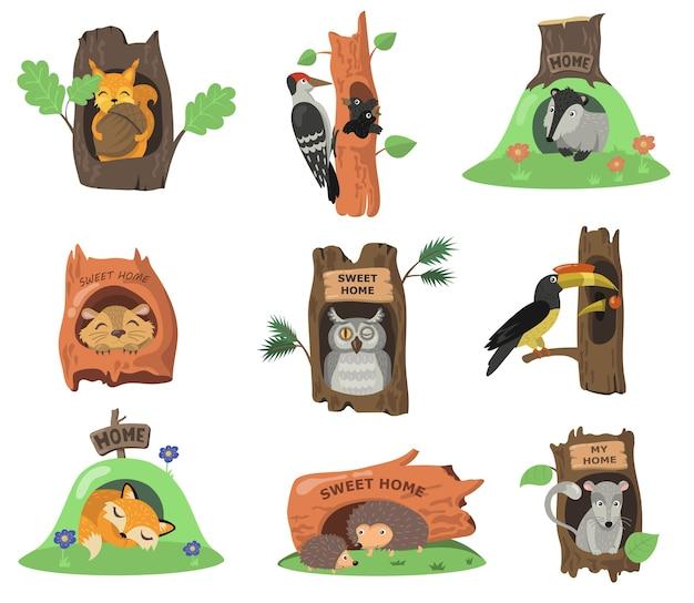 Bosdieren in holtes vlakke afbeelding instellen. cartoon eekhoorn, vos, uil of vogel in eiken boom gaten geïsoleerde vector illustratie collectie. huis in kofferbak en decoratieconcept Gratis Vector