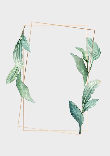 Botanisch frame Gratis Vector