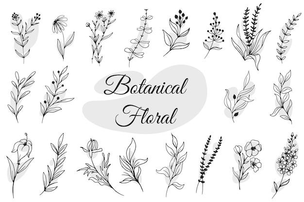 Botanische bloemenhand getrokken geïsoleerd Gratis Vector