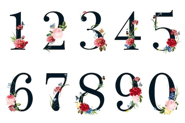 Botanische cijfers met tropische bloemenillustratie Gratis Vector