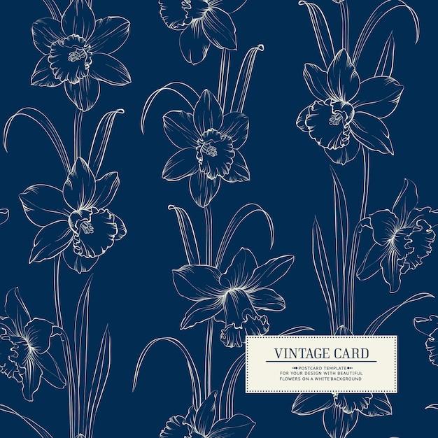 Botanische illustratie van narcis. Premium Vector