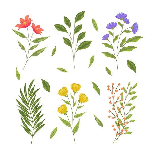 Botanische kruiden & wilde bloemen in retrostijl Gratis Vector
