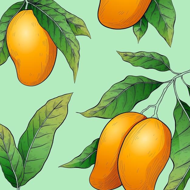 Botanische mangoboom illustratie Premium Vector