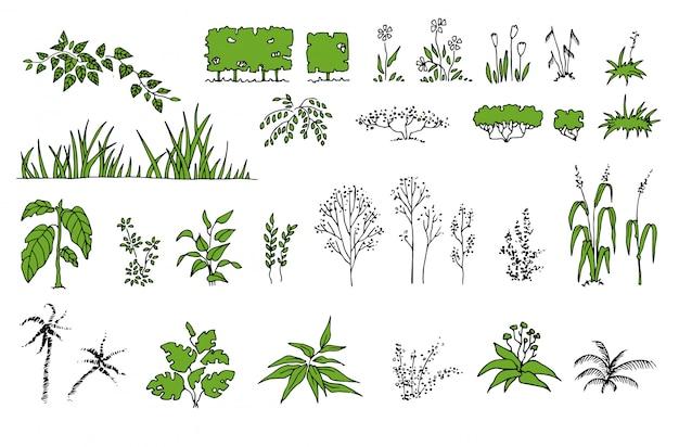 Botanische set met bladeren. varen, eucalyptus, buxus. vintage bloemencollectie Premium Vector